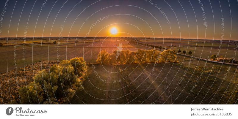 Panorama von Feldern für die Landwirtschaft bei Sonnenuntergang Landschaft Erde Himmel Wolkenloser Himmel Sonnenlicht Baum Wiese Dorf Menschenleer dunkel frei