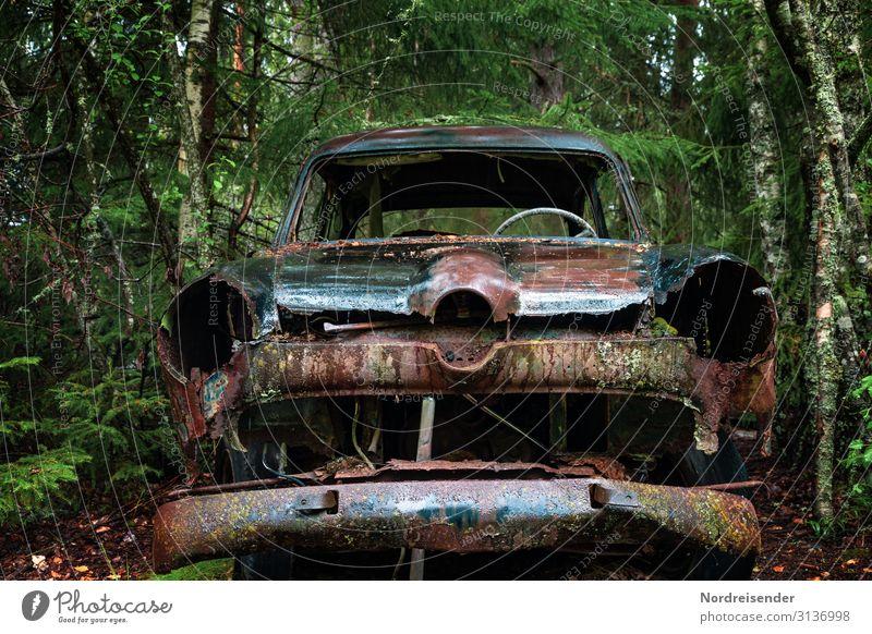 Alles wird zu Allem Industrie Maschine Wasser schlechtes Wetter Regen Baum Wald Urwald Verkehr Verkehrsmittel Fahrzeug PKW Limousine Metall alt warten kaputt
