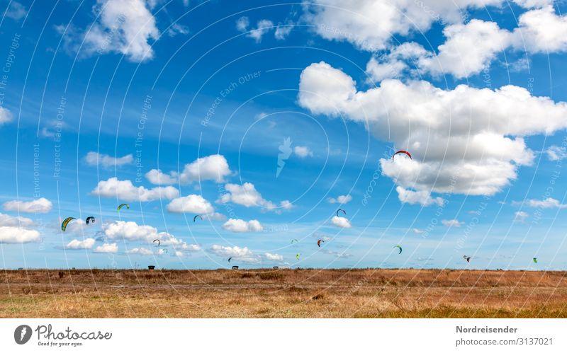 Kitesurfen an der dänischen Ostsee Lifestyle Ferien & Urlaub & Reisen Freiheit Sonne Meer Sport Wassersport Natur Landschaft Urelemente Luft Himmel Wolken