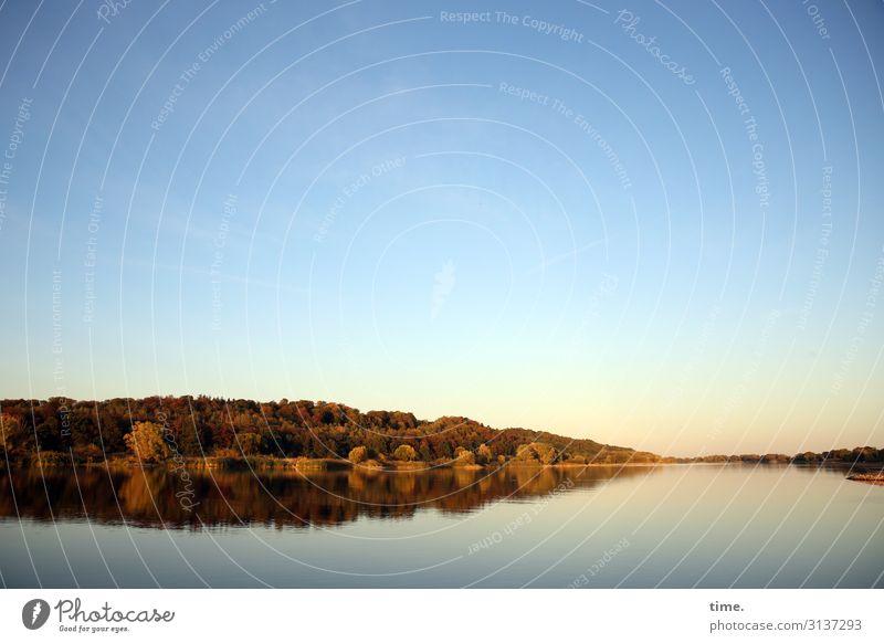 es ist nicht alles ruhig das still scheint Umwelt Natur Landschaft Himmel Wolkenloser Himmel Horizont Sommer Schönes Wetter Pflanze Baum Wald Küste Flussufer
