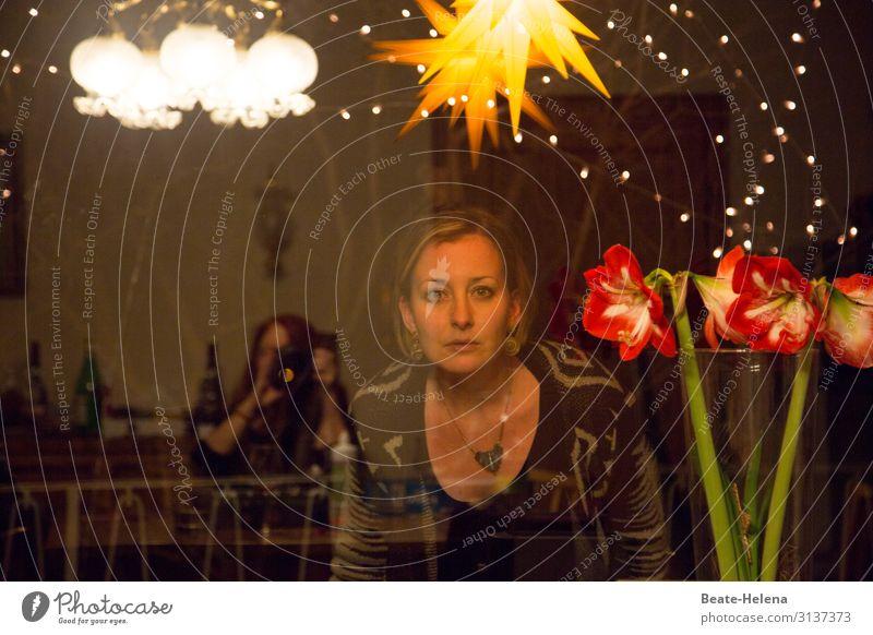 Lichtblick Junge Frau Jugendliche Nachthimmel Stern Winter Pflanze Blüte Dekoration & Verzierung Blumenstrauß beobachten Blühend entdecken Feste & Feiern
