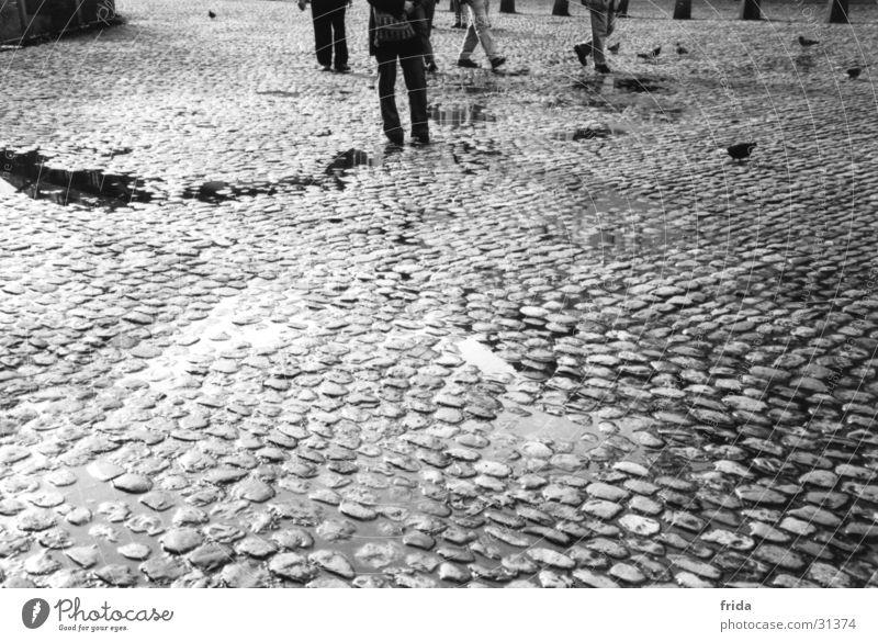 Kopfsteinpflaster nass Stadt Pfütze Verkehr Beine Schwarzweißfoto Stein Bodenbelag Straße