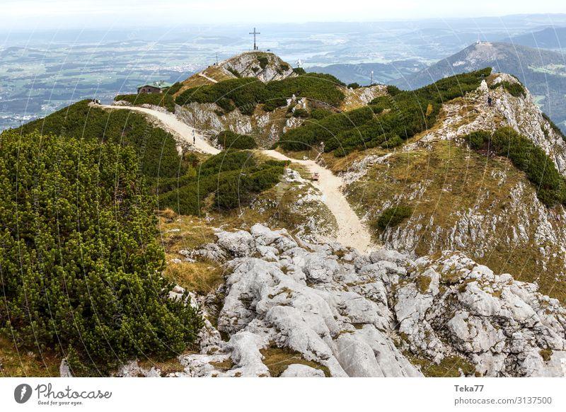 Untersberg Österreich Umwelt Natur Landschaft Pflanze Tier Herbst Hügel Felsen Alpen Berge u. Gebirge Gipfel ästhetisch Salzburg Bundesland Salzburg Farbfoto