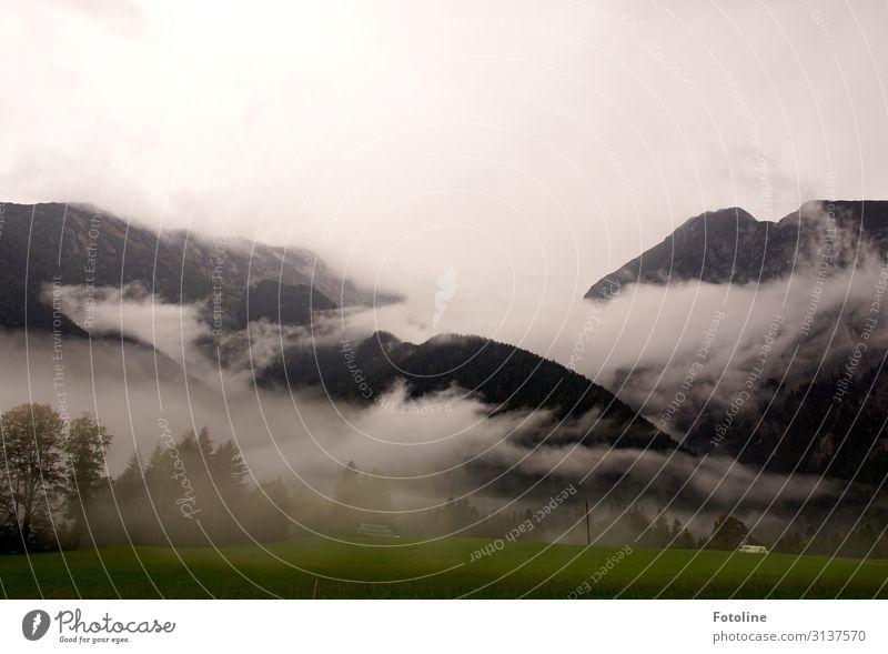 vernebelt Umwelt Natur Landschaft Pflanze Urelemente Erde Himmel Wolken Herbst Baum Gras Felsen Berge u. Gebirge Ferne natürlich grün schwarz weiß Österreich