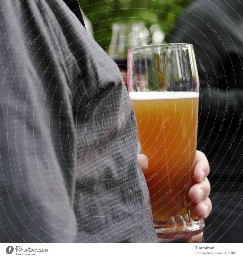 Einen zur Brust nehmen Getränk Bier Weizenbier Glas Bierglas Weizenbierglas Mensch Hand Finger Feste & Feiern genießen gold grau grün Freude Farbfoto