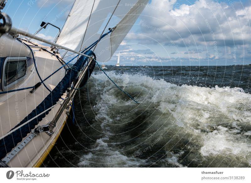Segelboot bei Wind und Welle Freizeit & Hobby Ferien & Urlaub & Reisen Abenteuer Ferne Freiheit Sommerurlaub Meer Wellen Wassersport Segeln Jacht Himmel Wolken