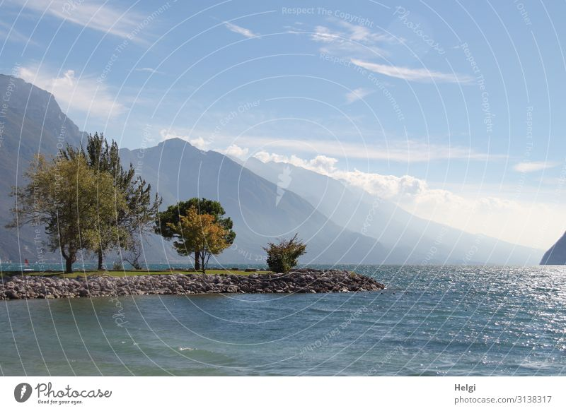 Panoramaaufnahme am Gardasee mit Bäumen auf einer Landzunge, hohen Bergen und blauem Himmel mit Wolken im Hintergrund Ferien & Urlaub & Reisen Tourismus Umwelt