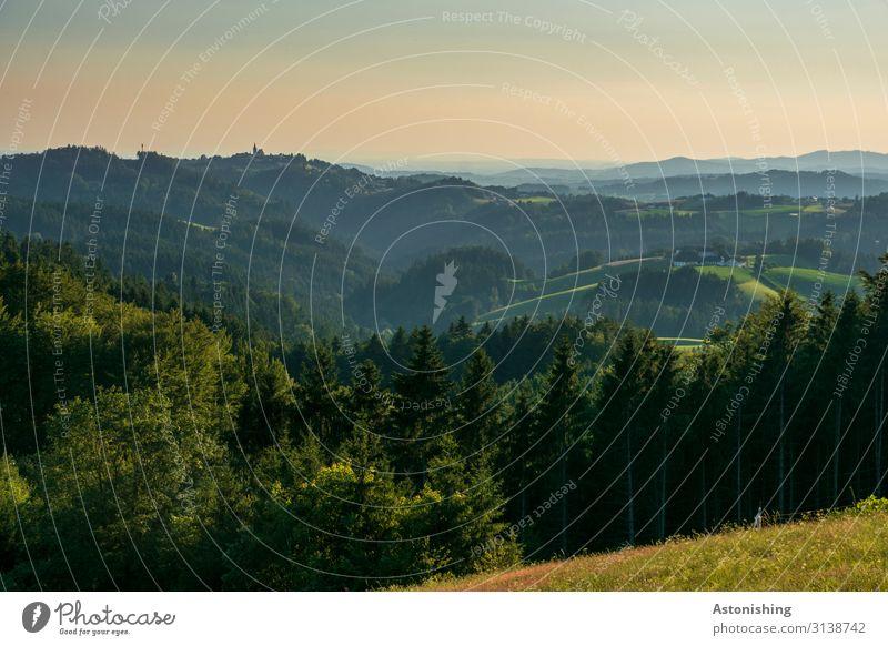 Mühlviertel Umwelt Natur Landschaft Luft Himmel Horizont Sonnenaufgang Sonnenuntergang Sommer Wetter Schönes Wetter Pflanze Baum Gras Wiese Feld Wald Hügel