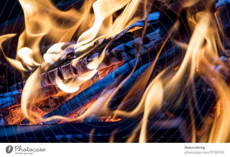 Lagerfeuer Sommer Holz heiß hell gelb schwarz Feuer Feuerstelle Brand Kohle Glut Flamme weiß Grillen Farbfoto mehrfarbig Außenaufnahme abstrakt Muster