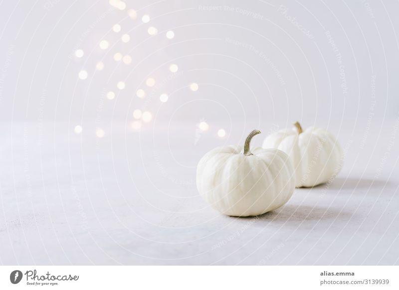 Elegante Herbstdekoration mit weißen Kürbissen und Lichterbokeh Gemüse Lifestyle elegant Stil Design Feste & Feiern Erntedankfest Halloween Natur Nutzpflanze