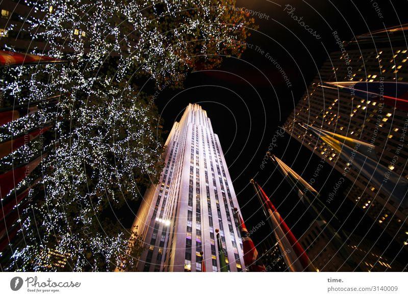 Halswirbelsäulentraining (XXI) Baum New York City Stadtzentrum Hochhaus Mauer Wand Fassade Fenster Sehenswürdigkeit Dekoration & Verzierung Fahne eckig gruselig