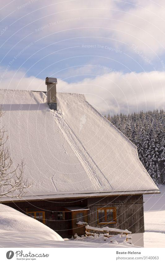 Schwarzwaldhaus im Winter Himmel Natur alt Landschaft Haus Wolken Fenster Architektur Lifestyle Schnee Gebäude außergewöhnlich Häusliches Leben leuchten