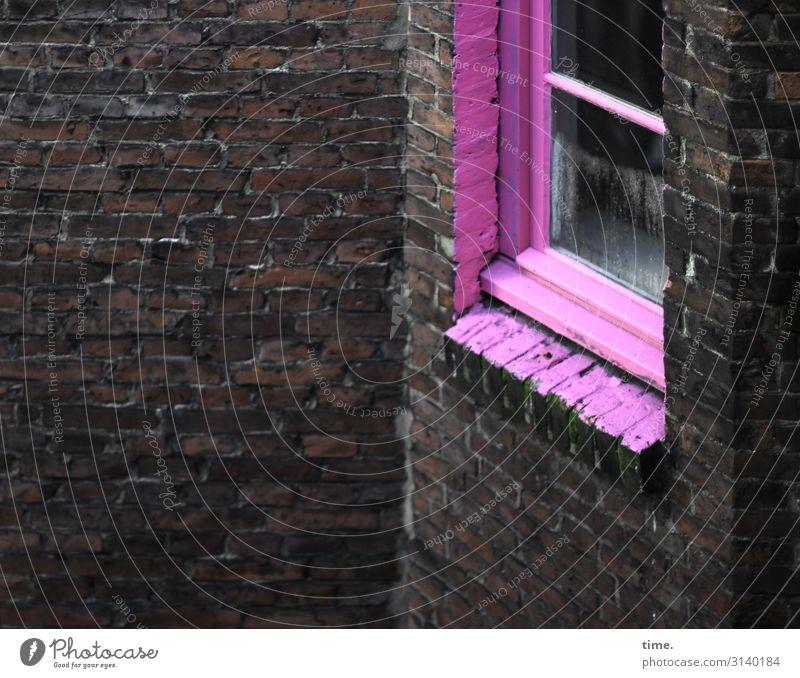 aufgepinkt Hamburg Stadtzentrum Haus Architektur Mauer Wand Fenster Glas Backstein außergewöhnlich dunkel rebellisch wild rosa Lebensfreude Begeisterung