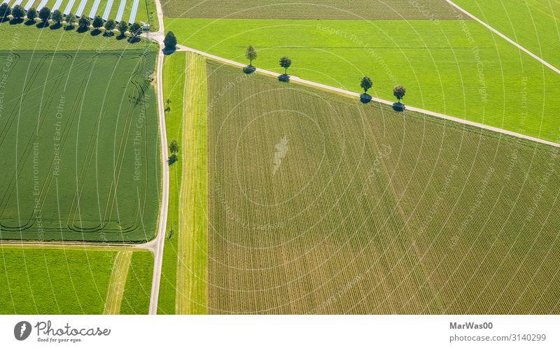 Traktor-Highways Ernährung Freiheit Sonnenenergie Umwelt Natur Landschaft Sommer Schönes Wetter Baum Gras Feld Straße Wege & Pfade fliegen Wachstum natürlich