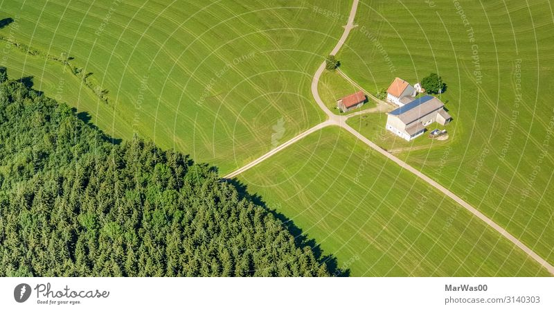 Hof im Grünen Bioprodukte Ferien & Urlaub & Reisen Freiheit Sommer Bauernhof Landwirtschaft Forstwirtschaft Umwelt Natur Landschaft Pflanze Erde Schönes Wetter
