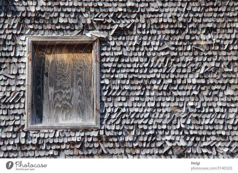 Fassade mit alten maroden Holzschindeln und mit Holzplatte verschlossenem Fenster Haus Schindeldach authentisch außergewöhnlich einzigartig kaputt natürlich