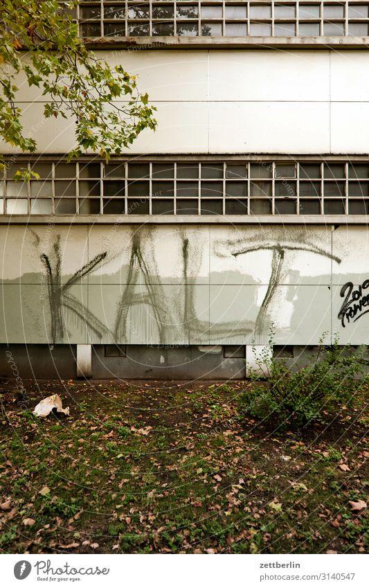 Kalt Haus Graffiti Wand kalt Gebäude Mauer Fassade Schriftzeichen Klima Grafik u. Illustration Erkältung Wort Physik Klimawandel Beschriftung Aufschrift