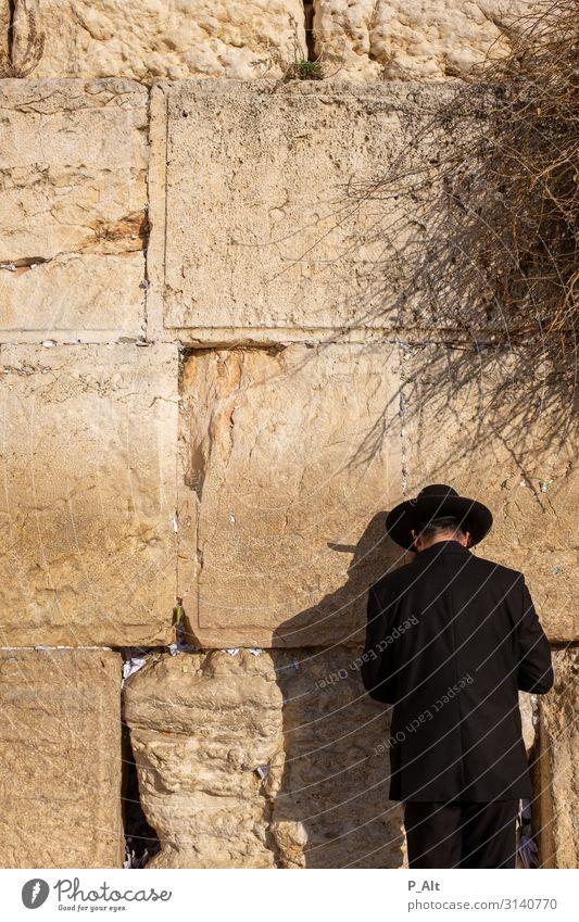 Klagemauer Kopf Rücken Mauer Wand Tugend Laster Toleranz vernünftig Religion & Glaube Judentum Hut Israel Jerusalem Farbfoto Außenaufnahme Tag