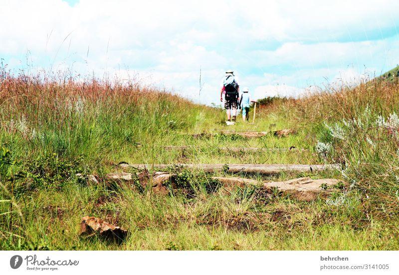weil oft der weg das ziel ist Südafrika Drakensberge wandern Natur Außenaufnahme Landschaft Farbfoto Ferien & Urlaub & Reisen Ferne Himmel Abenteuer Tourismus