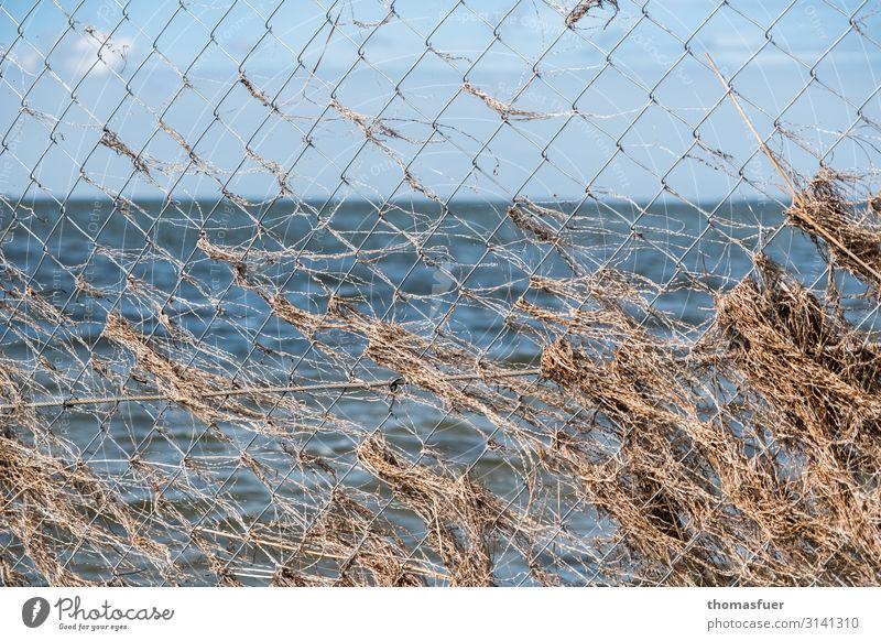 Halt! Ferien & Urlaub & Reisen Natur Pflanze Landschaft Meer Ferne Strand Umwelt Küste Gras Tourismus Horizont Wellen Ordnung Wind Schutz
