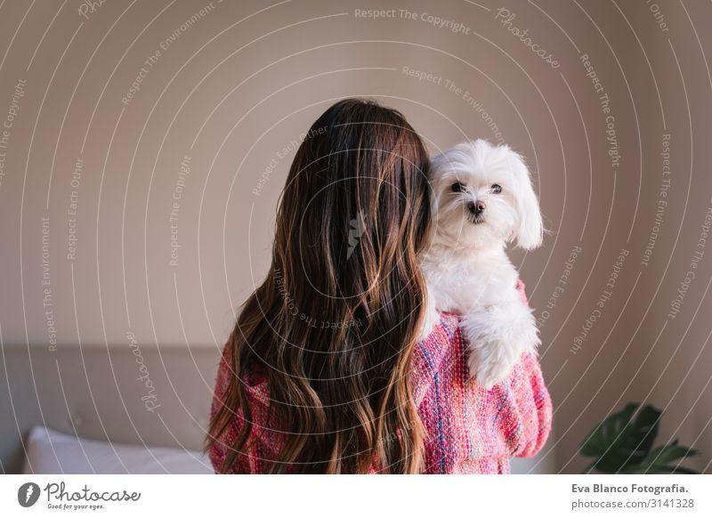 junge Frau, die zu Hause ihren maltesischen Hund auf der Schulter hält. Haustiere und Lebensweise. Rückansicht Jugendliche niedlich klein heimwärts