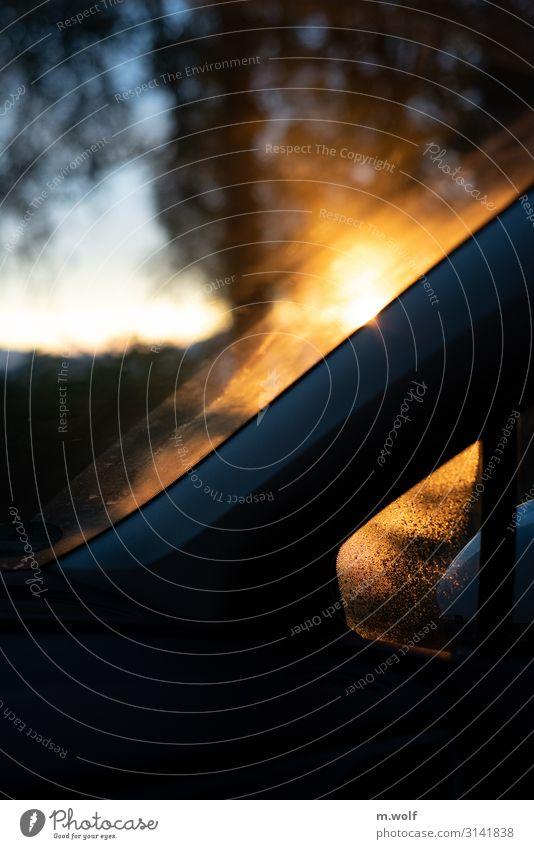 Autumn light Ferien & Urlaub & Reisen Erholung Ferne gelb Umwelt Autofenster Tourismus Freiheit Stimmung Ausflug Freizeit & Hobby PKW Verkehr träumen sitzen