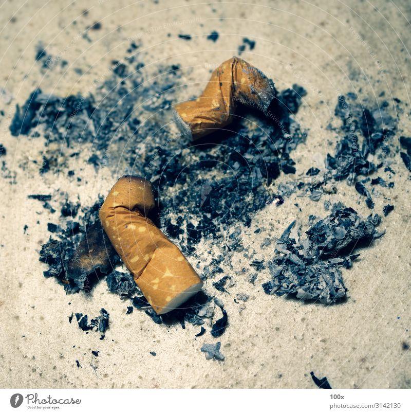 Verbrennen von Zigaretten mit Rauch Lifestyle Gesundheitswesen Krankheit schwarz weiß Tatkraft Tod gefährlich Ende komplex Zigarettenasche Sucht brennend Krebs