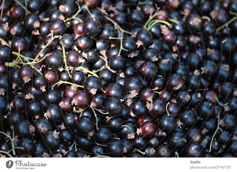 Beerenernte Lebensmittel Frucht Dessert Johannisbeeren Bioprodukte Vegetarische Ernährung Vegane Ernährung Natur Sommer Pflanze Nutzpflanze Gartenobst