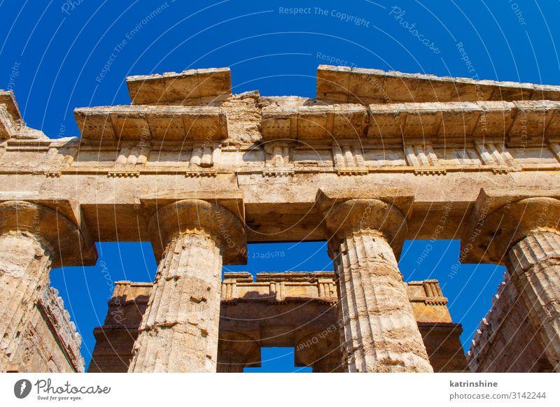 Der griechische Hera-II-Tempel. Paestum, Italien Ferien & Urlaub & Reisen Tourismus Kunst Kultur Park Ruine Architektur Stein alt Religion & Glaube Poseidonia