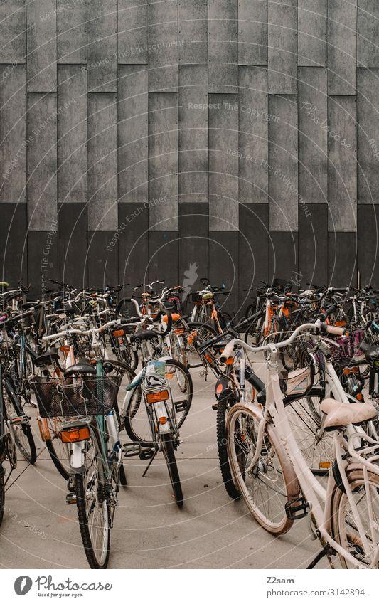 Radlparkplatz Sightseeing Fahrradfahren Stadt Stadtzentrum Architektur Verkehrsmittel stehen Gesundheit grau chaotisch Gesellschaft (Soziologie) gleich