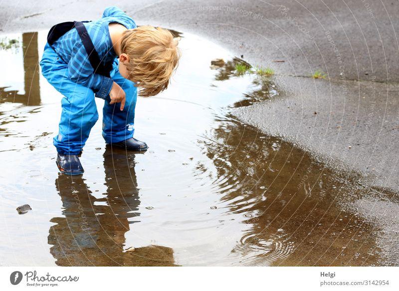 kleiner Junge steht vornübergeneigt in einer Pfütze und schaut nach unten Mensch Kind Kleinkind Kindheit 1 3-8 Jahre Umwelt Natur Sommer Regen Hose Gummistiefel