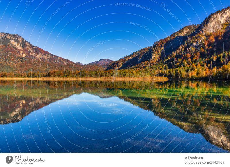 Spiegelung im See Berge u. Gebirge wandern Natur Landschaft Himmel Herbst Schönes Wetter Baum Blatt Wald Alpen Einsamkeit genießen Umwelt