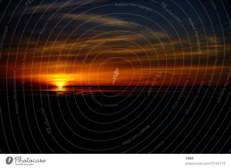 Sonnenuntergang an der Nordsee Ferien & Urlaub & Reisen Ferne Freiheit Sommer Sommerurlaub Strand Meer Wasser Himmel Horizont Sonnenaufgang Sonnenlicht