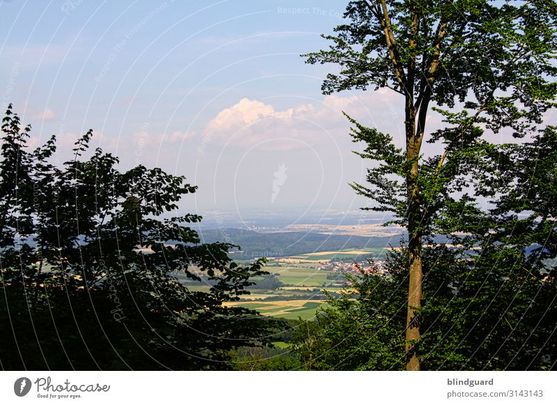 Unendliche Weiten (3) Himmel Ferien & Urlaub & Reisen Natur Pflanze Stadt Landschaft Baum Wolken Freude Wald Ferne Berge u. Gebirge Leben Umwelt Tourismus