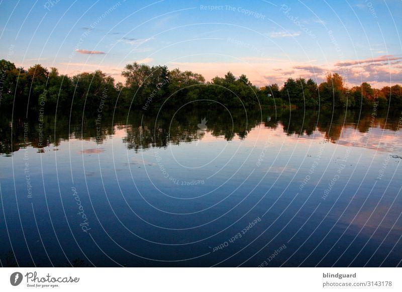 See und Bäume bei abendlichem Himmel. Refletion Spiegelung Wasser Binnengewässer Wald abendrot Reflexion & Spiegelung Natur Landschaft ruhig Menschenleer