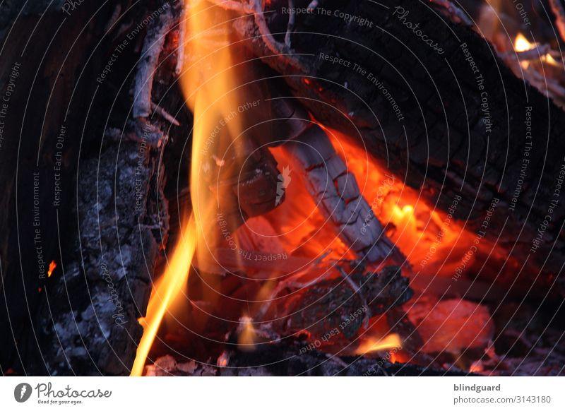 Die Heizperiode hat begonnen Urelemente Feuer Klimawandel schlechtes Wetter Eis Frost Kamin Grill Holz heiß gelb orange rot schwarz Erotik gemütlich Wärme
