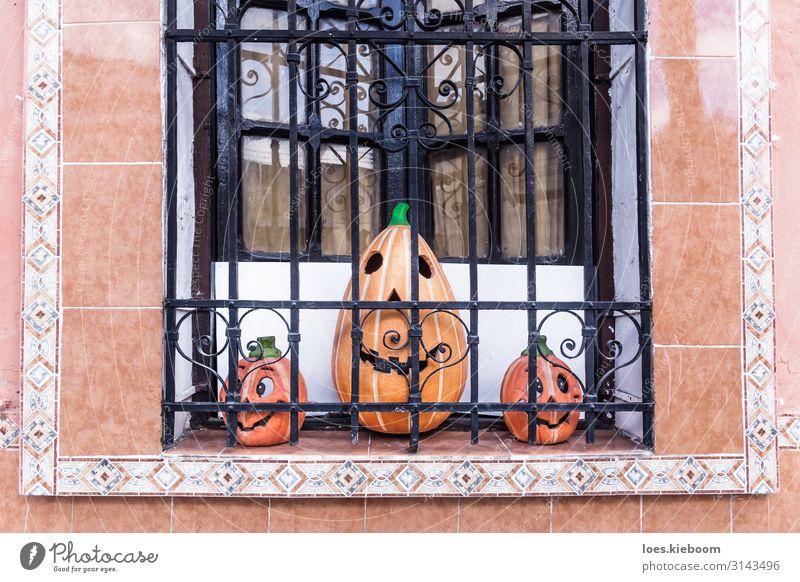 Three smiling pumpkins in a colonial window Freude Ferien & Urlaub & Reisen Tourismus Ferne Sightseeing Städtereise Veranstaltung Halloween Kunstwerk Skulptur