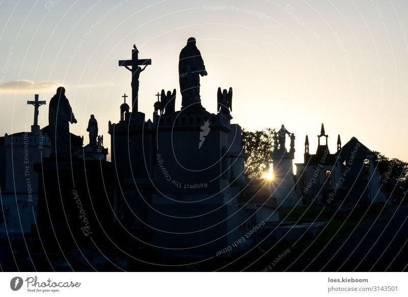 Sunset at Cementerio General with backlight Ferien & Urlaub & Reisen Tourismus Sightseeing Städtereise Sommer Halloween Stadt Kirche gruselig Traurigkeit Tod