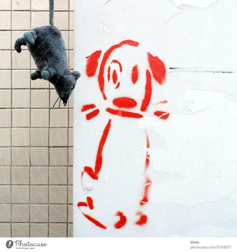 Fluggast Mauer Wand Fliesen u. Kacheln Tier Hund Plüsch Stofftiere Ratte 2 Spielzeug Dekoration & Verzierung Kitsch Krimskrams Souvenir Farbe Stein Kunststoff