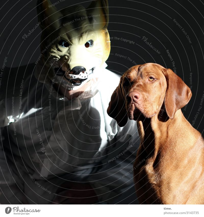 Casting maskulin Mann Erwachsene 1 Mensch Künstler Schauspieler Arbeitsanzug Maske Tier Haustier Hund Tiergesicht Fell Wolf beobachten Kommunizieren Blick