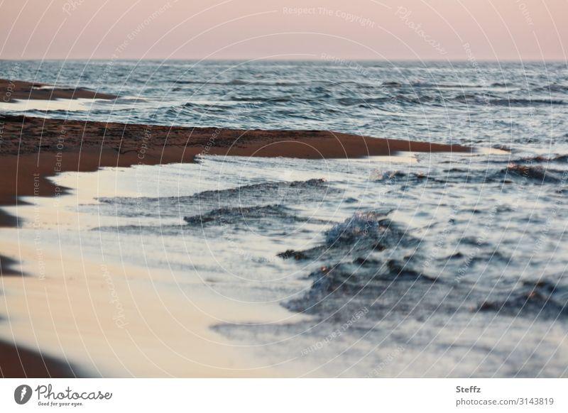 wilder Strand Umwelt Natur Landschaft Urelemente Wasser Sonnenaufgang Sonnenuntergang Seeufer Ostsee Meer Sandstrand Küste Polen Europa dunkel natürlich schön
