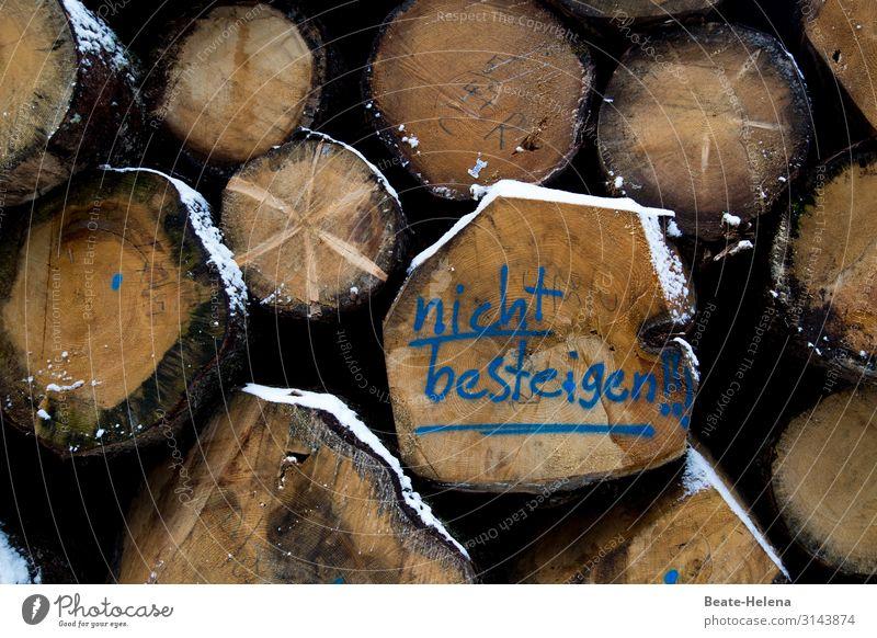 Geschriebenens l Waldvorschriften Natur alt Holz Leben natürlich Tod Zusammensein Schriftzeichen liegen Kraft ästhetisch warten kaputt Warmherzigkeit Zeichen