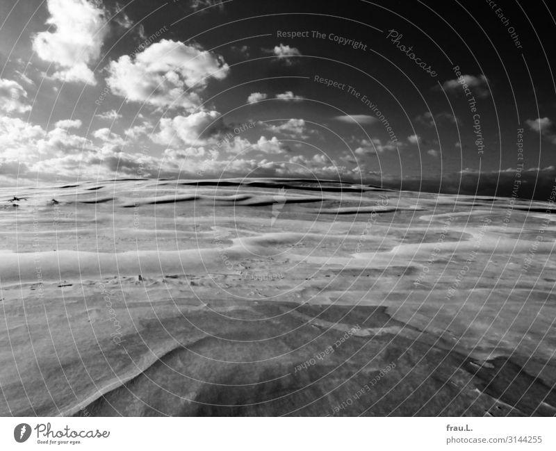 Polnische Sahara Himmel Ferien & Urlaub & Reisen Natur Sommer schön Landschaft Wolken ruhig Winter Tourismus außergewöhnlich Sand Ausflug wandern Schönes Wetter