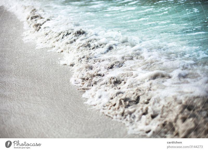 Rauschen Wasser Meer Strand grau Sand Wellen türkis Sandstrand Brandung Schaum kommen