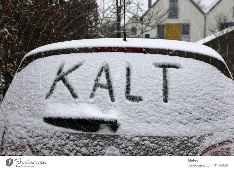 Winter PKW kalt frieren gefroren Frost Deutsch Glas Eis Januar Natur natürlich Jahreszeiten Schnee Schneefall Schneeflocke weiß Autofenster Fensterscheibe