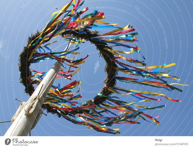 abgehoben   Maibaum mit fliegenden bunten Bändern vor blauem Himmel Feste & Feiern Wolkenloser Himmel Frühling Schönes Wetter Dekoration & Verzierung Holzpfahl