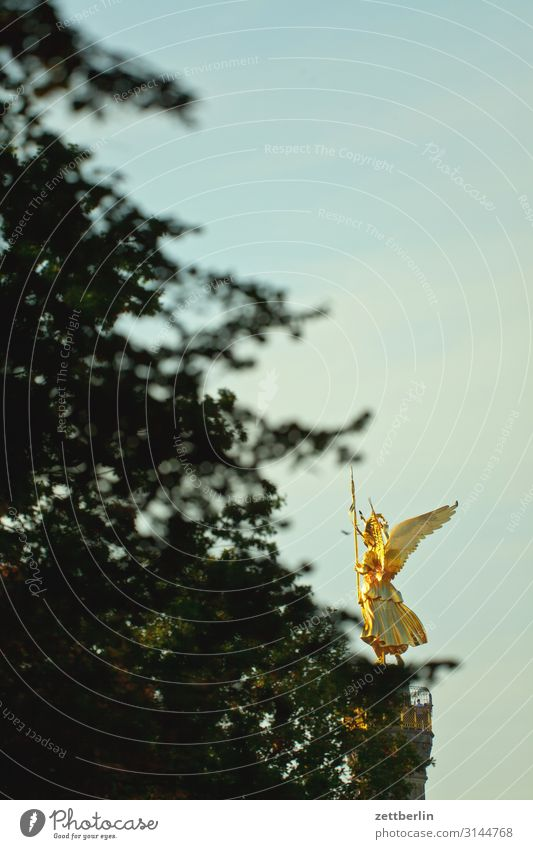 Viktoria im Tiergarten Siegessäule Denkmal else Goldelse viktoria großer stern Park Wald Baum Berlin-Mitte Deutschland Verkehr Figur gold Dämmerung Abend