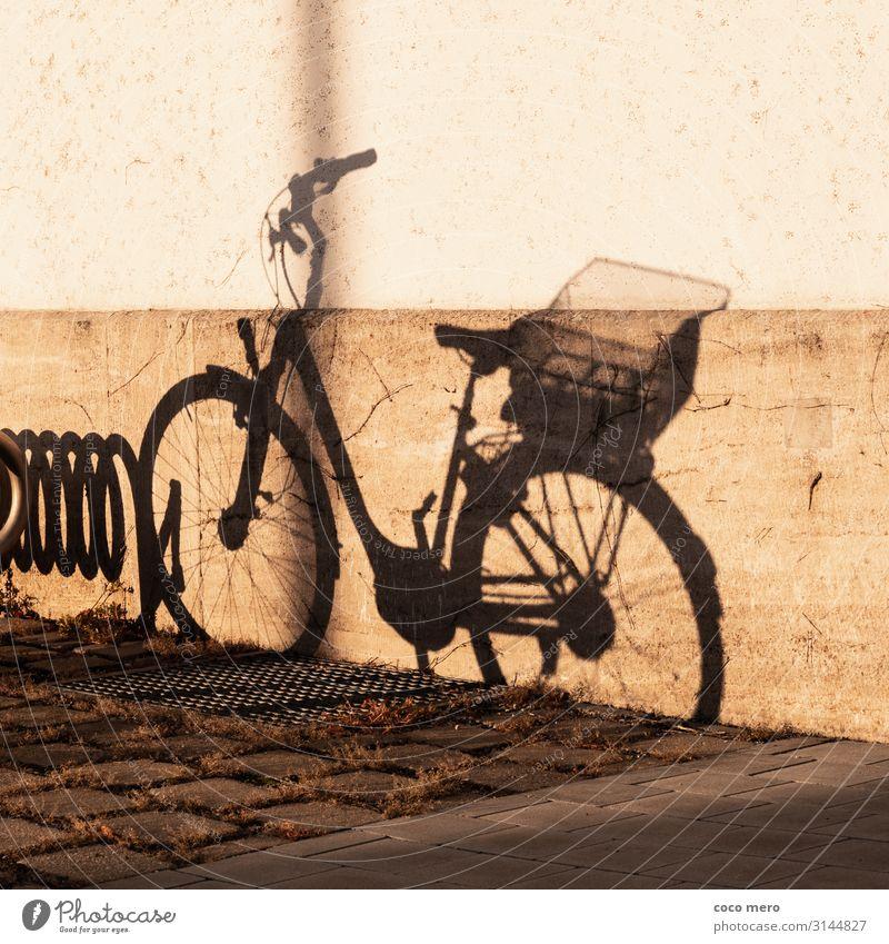 Schattenrad Fahrradfahren Mauer Wand braun schwarz Schattenspiel Farbfoto Gedeckte Farben Außenaufnahme Tag Kontrast Zentralperspektive