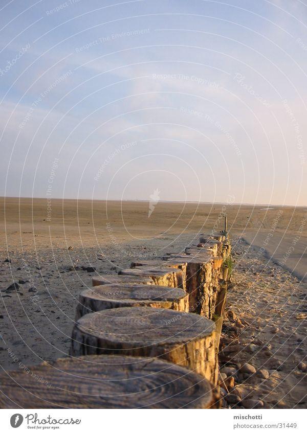 Pfosten Strand Holz Baum Sonnenuntergang Dänemark Himmel Detailaufnahme