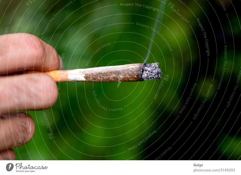 Männliche Hand hält eine ilegale Zigarre. Medikament Schmerz rechtswidrig Cannabis medizinisch Abhängigkeit Gesundheit Medizin präventiv klinisch Ackerbau